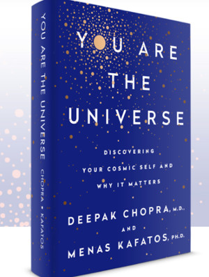 Your Are the Universe